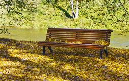 Banco en parque del otoño Fotos de archivo libres de regalías