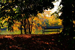 Banco en parque del otoño fotos de archivo