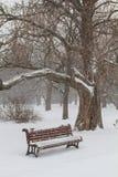 Banco en un parque Foto de archivo libre de regalías