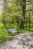 Banco en un parque verde Foto de archivo libre de regalías