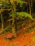 Banco in foresta in autunno - Baviera immagini stock libere da diritti