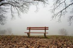 Banco in foresta un giorno nebbioso Immagini Stock