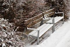Banco gemellato coperto in neve durante la stagione invernale sulla riva del fiume in Piestany, Slovacchia Fotografia Stock