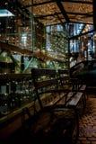 banco, janela do restaurante, festão, luzes, noite fotos de stock royalty free