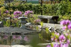Banco japonês do jardim da madeira, uma lagoa, Bush com flores cor-de-rosa, Foto de Stock