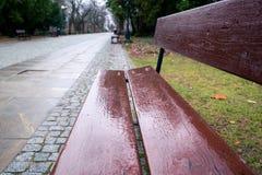 Banco marrón mojado vacío, camino vacío en el parque en Varsovia, Polonia, fondo borroso fotos de archivo libres de regalías