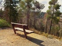Banco marrone vuoto con la foresta Immagini Stock Libere da Diritti