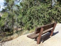 Banco marrone vuoto con la vista della foresta Fotografia Stock Libera da Diritti