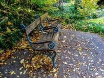 Banco nel parco con il lotto delle foglie di autunno fotografia stock