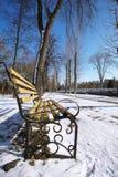 Banco nel parco della città all'inverno Fotografia Stock