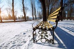 Banco nel parco della città all'inverno Fotografie Stock