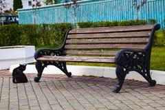 Banco nel parco ed in un gatto nero fotografia stock libera da diritti
