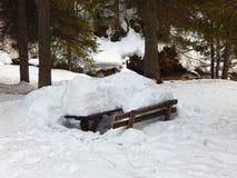 Banco nevado Fotografia de Stock Royalty Free