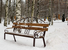 Banco nevado en parque del invierno Fotografía de archivo