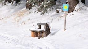 Banco no.1 di inverno Fotografie Stock Libere da Diritti