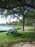 Banco no parque Fotos de Stock Royalty Free