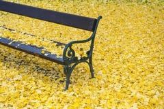 Banco no parque do outono fotografia de stock royalty free