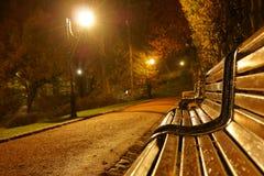 Banco no parque na noite imagem de stock royalty free