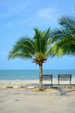 Banco perto da praia foto de stock royalty free