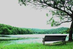 Banco perto do lago Fotos de Stock Royalty Free