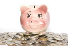 Banco Piggy Foto de Stock