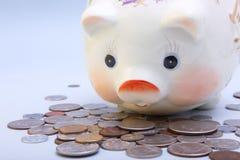 Banco Piggy Imagens de Stock