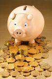 Banco Piggy australiano Fotos de Stock Royalty Free