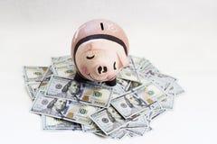 Banco Piggy com dólares Imagens de Stock