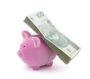 Banco Piggy com dinheiro polonês Foto de Stock Royalty Free