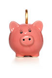 Banco Piggy com moeda de ouro Fotos de Stock