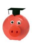 Banco Piggy com Mortarboard Imagem de Stock
