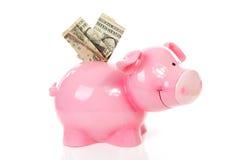 Banco piggy cor-de-rosa com dinheiro do dólar Imagens de Stock
