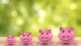 Banco Piggy crescente Fotos de Stock
