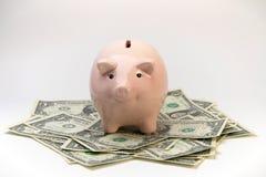 Banco Piggy e dinheiro Fotos de Stock
