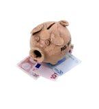Banco Piggy e euro Imagem de Stock