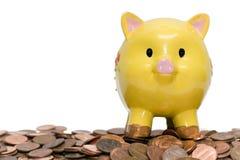 Banco Piggy e moedas de um centavo Imagens de Stock Royalty Free