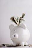 Banco Piggy enchido com dinheiro Fotografia de Stock Royalty Free