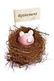 Banco Piggy no ninho do pássaro Fotografia de Stock