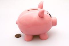 Banco Piggy Pooping uma moeda de um centavo fotografia de stock royalty free