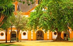 Banco reale di Andalucían di arte equestre fotografia stock libera da diritti