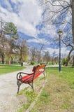 Banco rosso nel parco di primavera grandangolare Immagini Stock