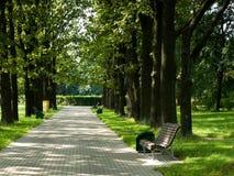 Banco solo en parque Foto de archivo libre de regalías
