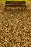 Banco sopra il tappeto di autunno Immagine Stock Libera da Diritti