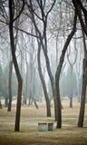 Banco sotto gli alberi Immagini Stock