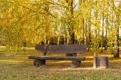 Banco sotto gli alberi di betulla di autunno fotografia stock libera da diritti
