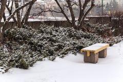 Banco, tierra y arbustos del asiento cubiertos todo en nieve imágenes de archivo libres de regalías