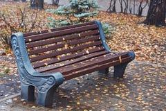 Banco umido nel parco di autunno Immagini Stock