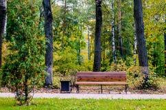 Banco vacío en parque Foto de archivo libre de regalías