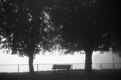 Banco vacante bajo los árboles Fotos de archivo