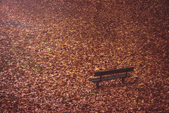 Banco vazio abandonado nas folhas de outono caídas Foto de Stock Royalty Free